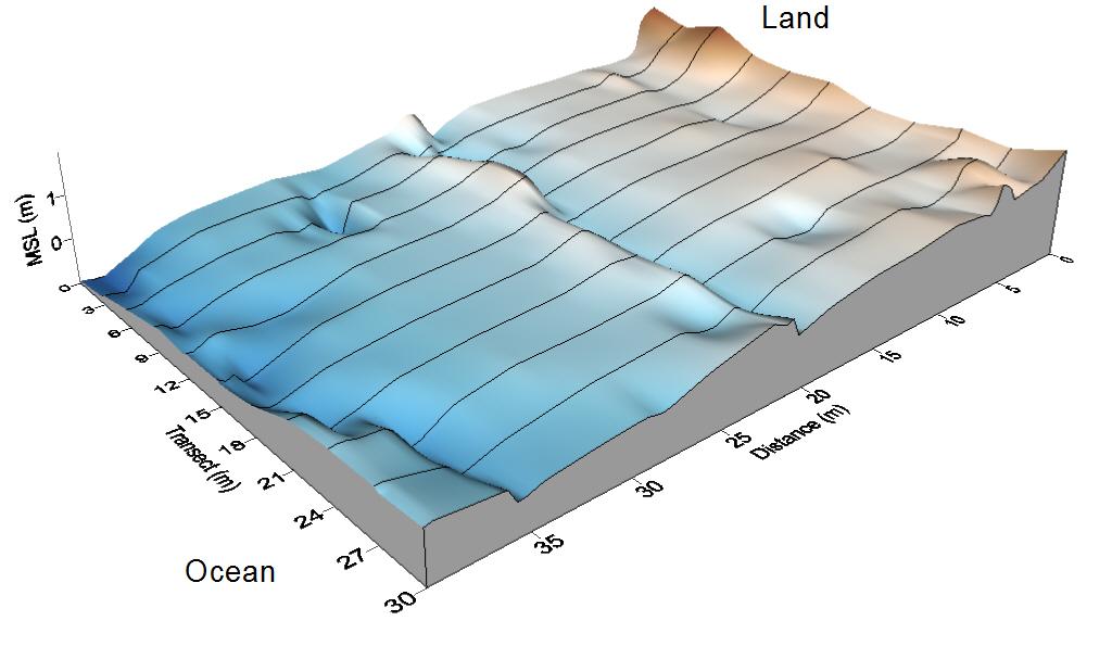 Fitzgerald Marine Reserve Creek Topo Map