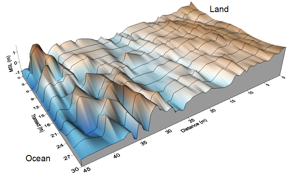 Sea Ranch Creek Topo Map