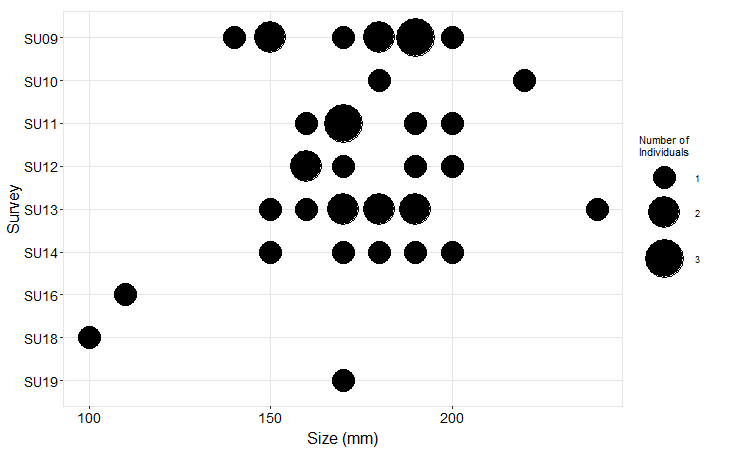 American Camp Pisaster size plot