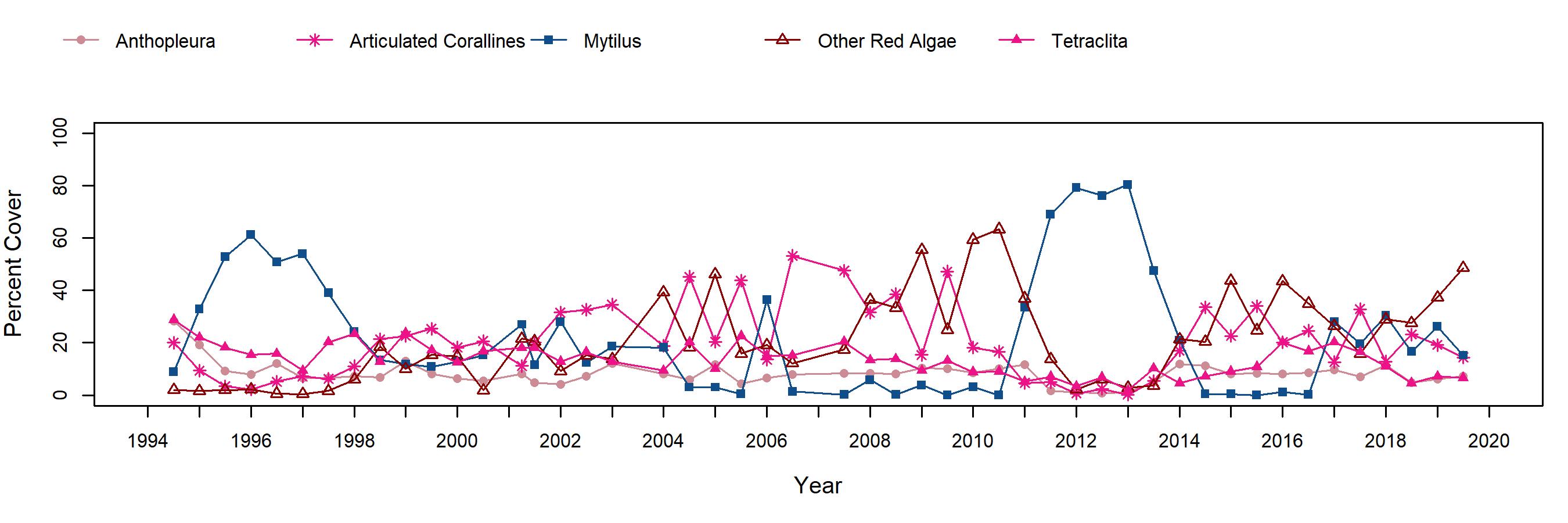Bird Rock Mytilus trend plot