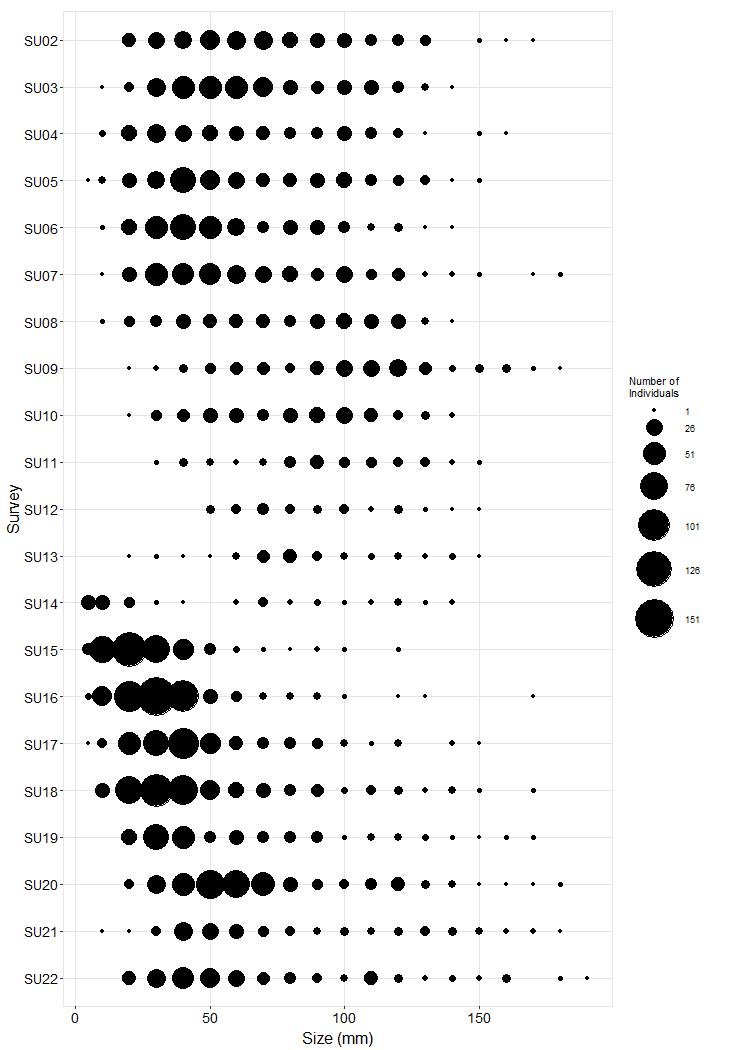 Bodega Pisaster size plot