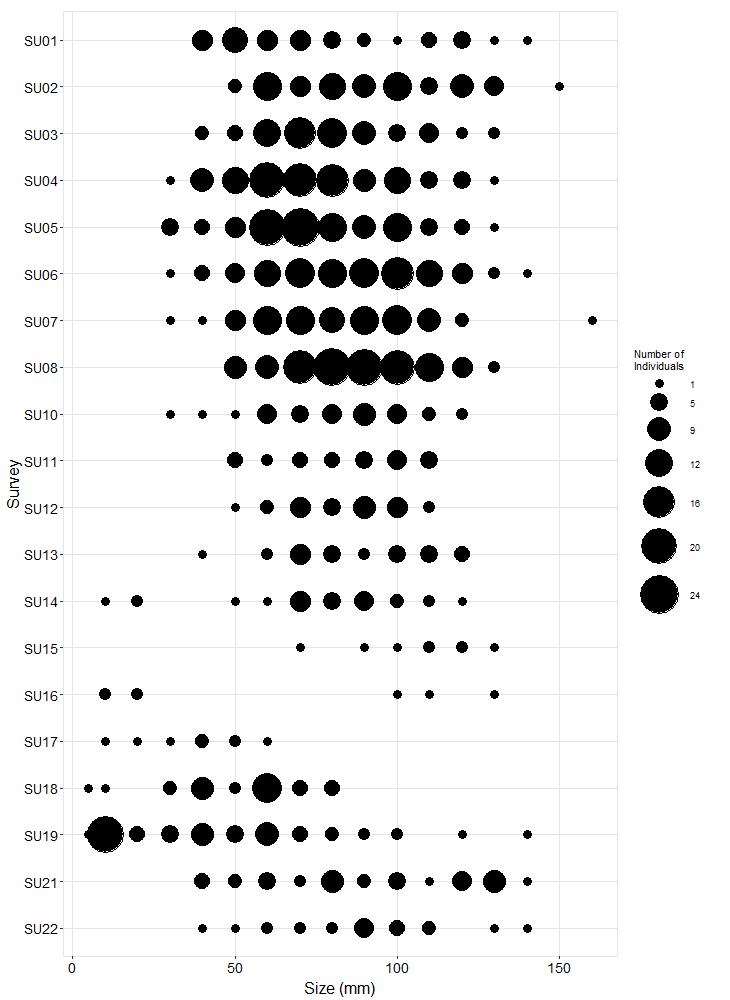 Cape Arago Pisaster size plot