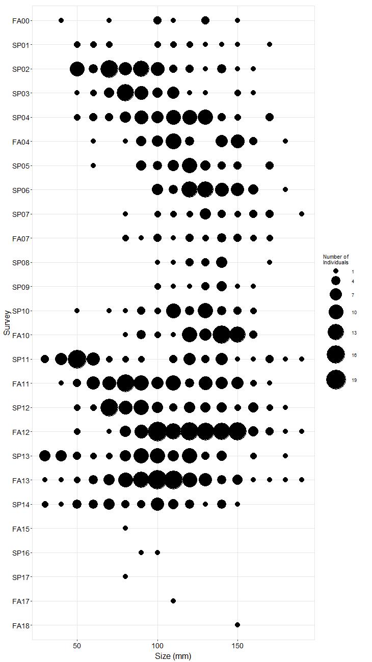 Carpinteria Pisaster size plot