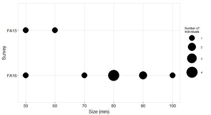 Cosign Pisaster size plot