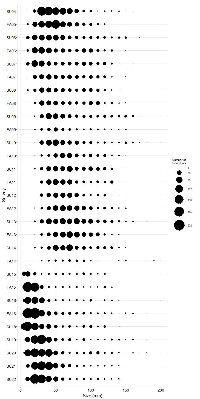 Enderts Pisaster size plot