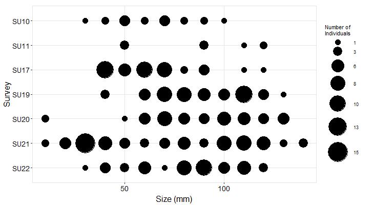 Gerstle Cove Pisaster size plot