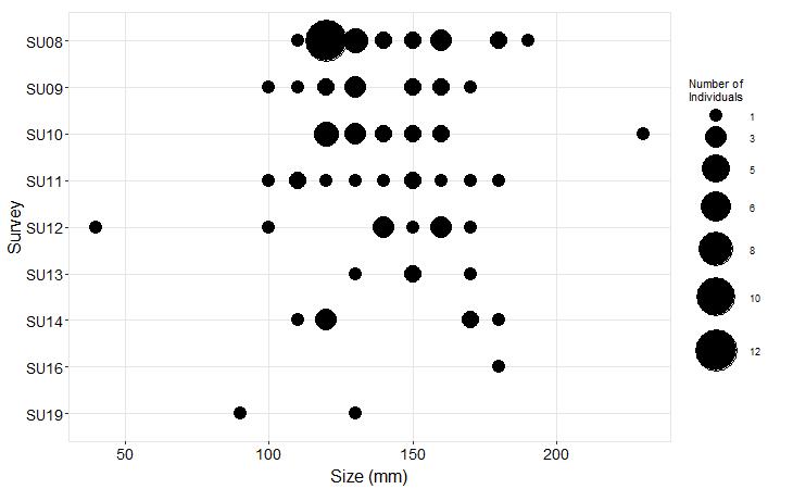 Kydikabbit Point Pisaster size plot