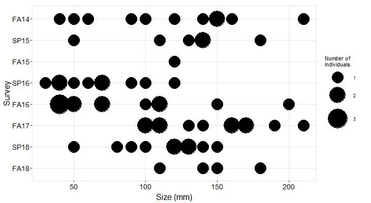 Marker Poles Pisaster size plot