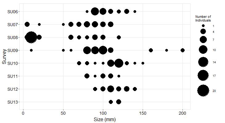 Point Bonita Pisaster size plot