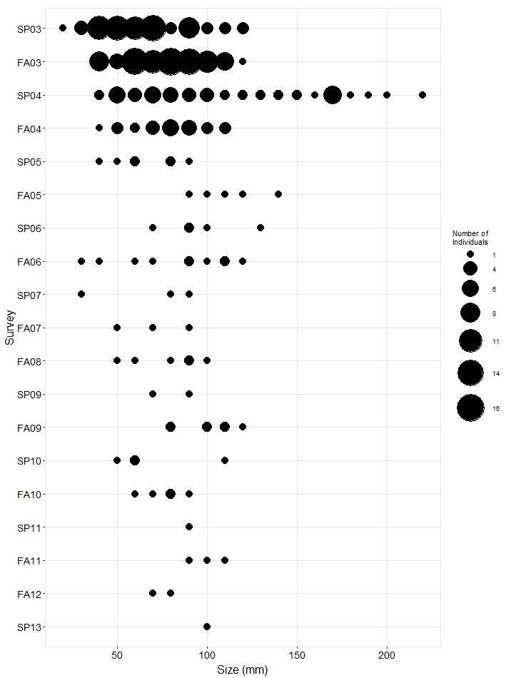 Point Fermin Pisaster size plot