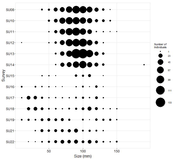 Point Grenville Pisaster size plot