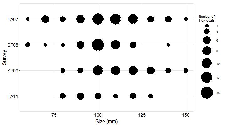 Point Piños Pisaster size plot