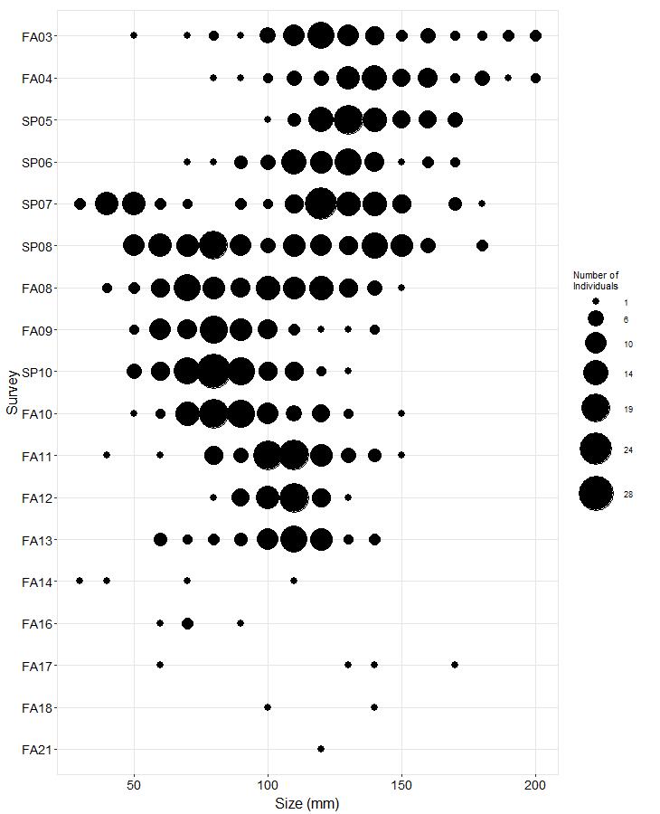Scorpion Rock Pisaster size plot
