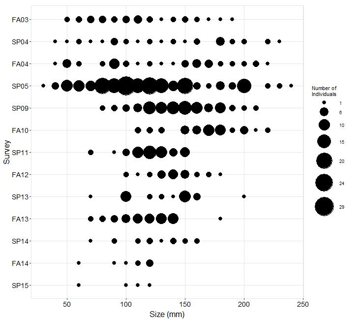 Scripps Reef Pisaster size plot