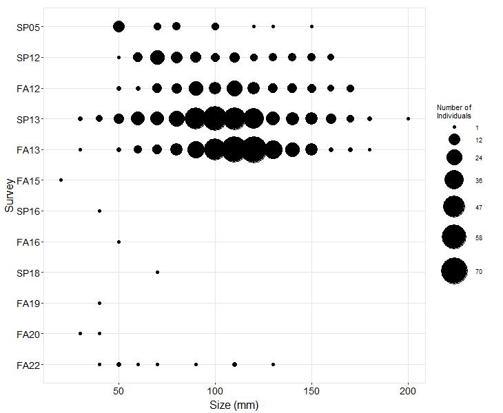 Shaws Cove Pisaster size plot