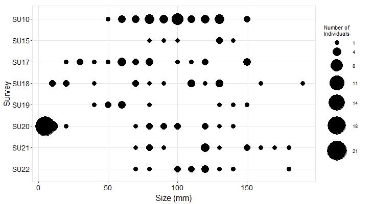Stornetta Pisaster size plot