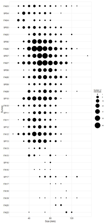 White Point Pisaster size plot